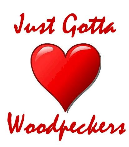 You Just Gotta Love Woodpeckers