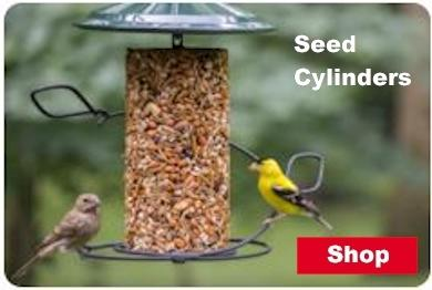 Shop Seed Cylinders